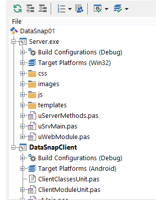 DataSnapClient0000